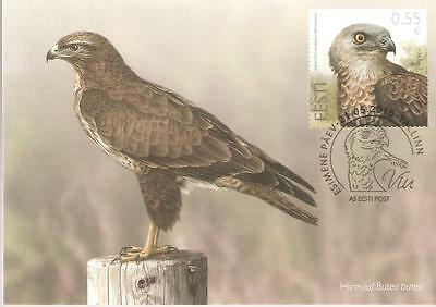 2015   Estonia  -   Honey Buzzard On Maxi Card