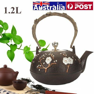 1.2L Cast Iron Chinese Style Teapot Boiling Kettle Floral Half Handmade Tea Pot