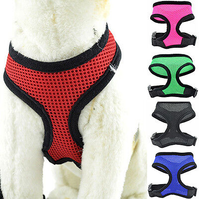 FT- Pet Cat Puppy Dog Harness Soft Mesh Vest Walk Collar Safety Leash Strap Dain