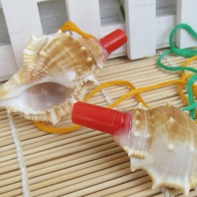 Creative Natural Instrument Conch Whistle Life Accessories Saving Survival Tool
