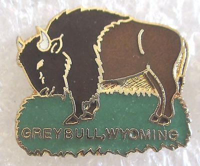 Town of Greybull, Wyoming Travel Souvenir Collector Pin-Bison Buffalo
