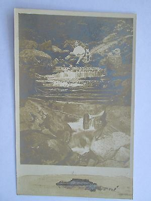 Vintage Man and Pit Bull Terrier Sitting On Waterfall Real Photo Postcard OLD!!