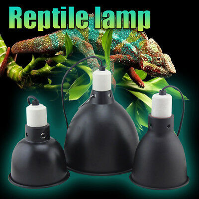 Ceramic Heat Lamp Light Holder Dome Chicken Brooder Reptile Basking with Switch