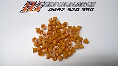 BOSCH FUEL INJECTOR REPAIR KIT - 100 x PINTLE CAPS - SUITS HOLDEN V6 & V8 GMH