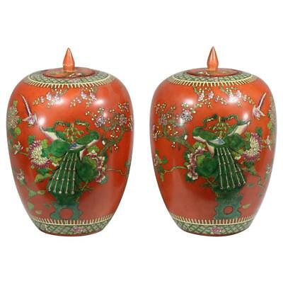 19th century Exquisite Pair of Persimmon Porcelain Ginger Jars- Qing Dynasty