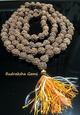 RUDRAKSHA 11mm RUDRAKSH JAPA MALA ROSARY 108+1 RAW BEADS PRAYER YOGA MEDITATION