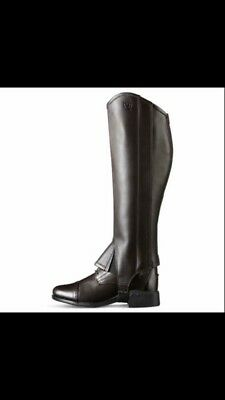 Ms Chocolate Ariat Chaps
