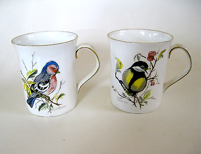 Wild Birds of America Cups Queen's Fine Bone Rosina China. Cha Finch & Great Tit