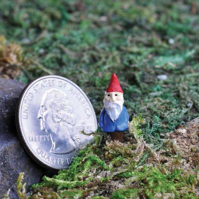 Miniature Dollhouse FAIRY GARDEN Micro Mini Gnome Pick