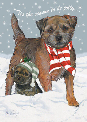 Border Terrier Christmas Cards Set of 10 cards & 10 envelopes