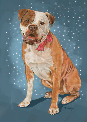 American Bulldog Christmas Cards Set of 10 cards & 10 envelopes