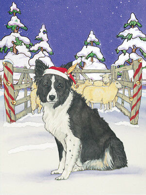 Border Collie Christmas Cards Set of 10 cards & 10 envelopes