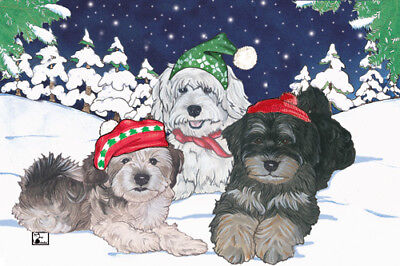 Havanese Christmas Cards Set of 10 cards & 10 envelopes