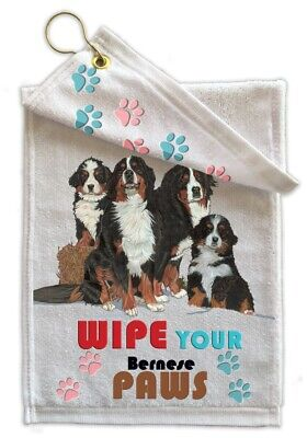 Bernese Paw Wipe Towel