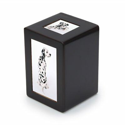 Pidsen Pet Dog Cat Cremation Urn Peaceful Pet Memorial Keep sake Urn Photo Box