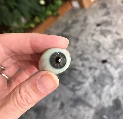 Vintage Prosthetic Glass Eye