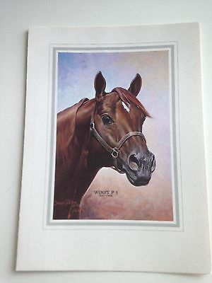 Collectible Thoroughbred Horse Folded Card 7 X5 Artist Orren Mixer Wimpy 1937-59