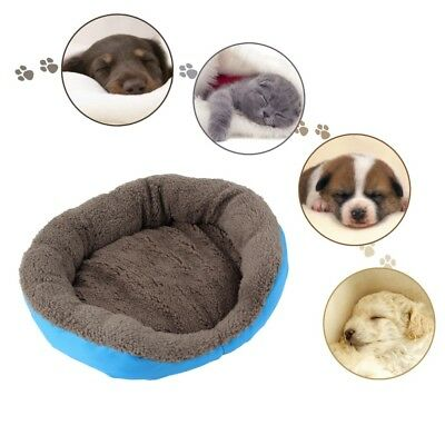Dog Bed Chihuahua Yorkshire Kennel Pet Puppy Cat Bed Pad For Small Dog Warm Bed