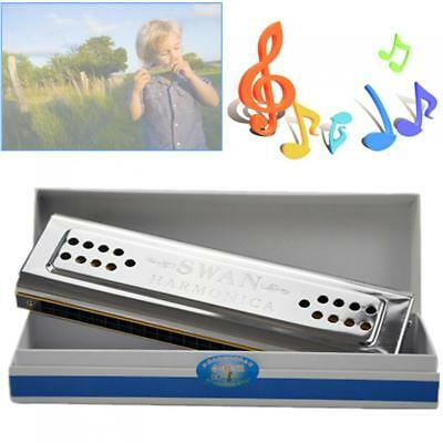 Professional 24 Holes Key Of C&G Double Side Tremolo Harmonica Stainless Steel