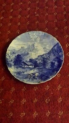 Large antique j&g meakin plate