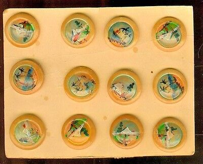 Original Tourist Card of 12 Hand Painted Vegetable Ivory Buttons Central America