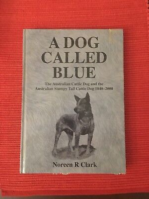 A Dog Called Blue - The Australian Cattle Dog And The Stumpy Tail Cattle Dog