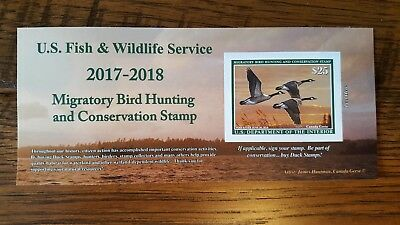 2017-2018 US Federal Duck Stamp - New