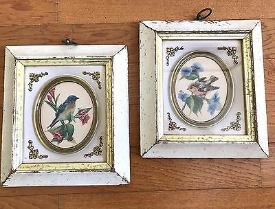 Vintage Set Of Eastern Blue Birds Print Picture Distressed Frame Shabby Chic