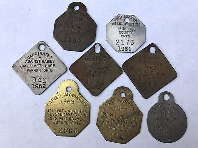 Lot of Vintage Rabies Tags