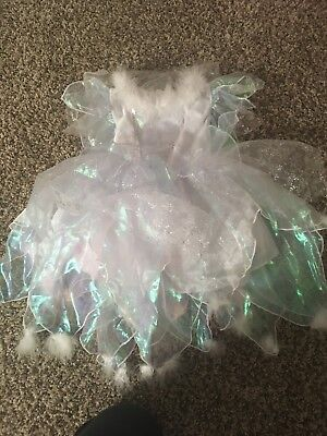 Fairy Costume Size 2-3T. NWT