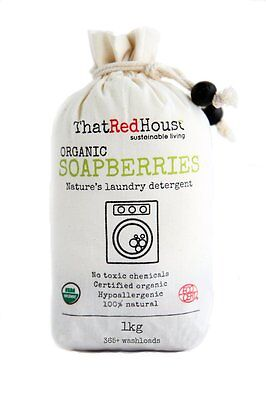SOAPBERRIES SOAP NUTS by That Red House 1 kilo