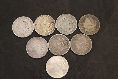 Eight US  Silver Dollars - Lot 3