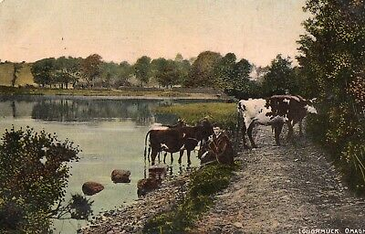 Loughmuck  Omagh Tyrone Ireland Vintage Postcard Posted 13-Aug-1910