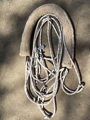 Horse Lunging System Kincade