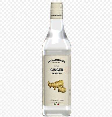 ODK Ginger Coffee Syrup 750ml Professional