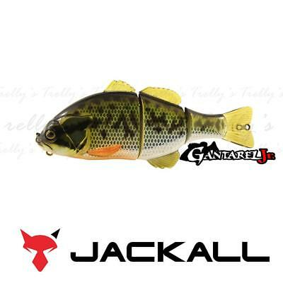 Jackall: Gantarel Jr. Lures Outdoor Fishing Hunting
