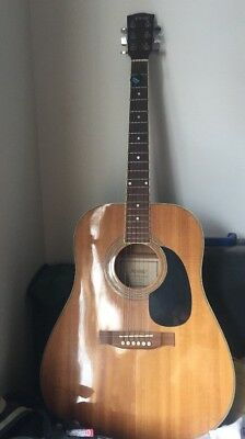 Novaro Acoustic Guitar with Strap and Bag