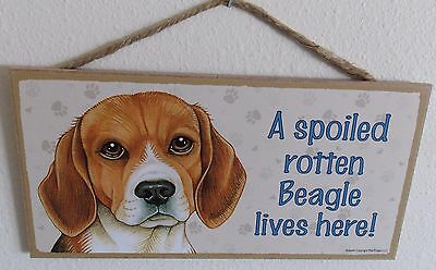 """A Spoiled Rotten Beagle Lives Here!  5"""" X 10"""" Wood Dog Sign Plaque"""