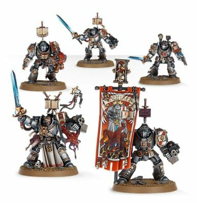 Grey Knights - Paladin Terminators - FREE SHIPPING