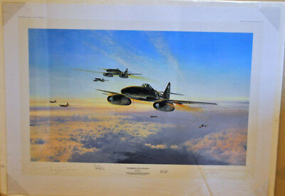 Stormbirds over the Reich by Robert Taylor, limited edition print