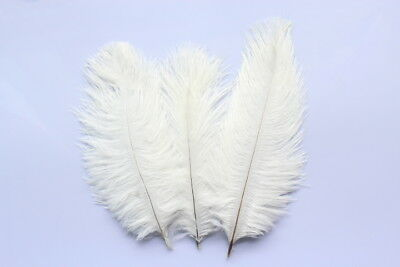 Hot Sale beautiful! 10pcs ostrich feathers 6-8 inches/15-20 cm white decoration