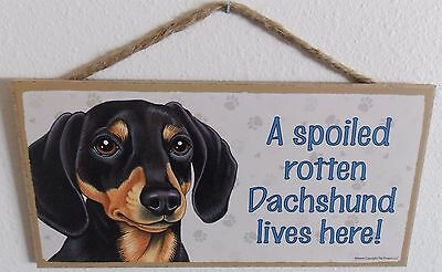 """A Spoiled Rotten Dachshund Lives Here!  5"""" X 10"""" Wood Dog Sign Plaque"""
