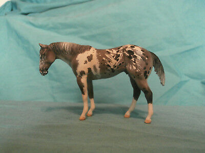 Peter Stone Custom Chips QH -- Gray Pintaloosa by Kathleen Timmerman