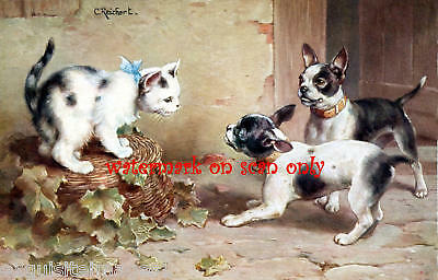 C Reichert~Cute French Bulldogs~Cat NEW Lge Note Cards
