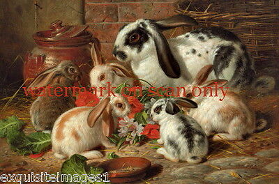 1881 A. Barber~Colorful Family of Rabbits Eating Flowers~ NEW Lge Note Cards