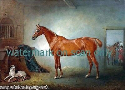 1845 Chestnut Thoroughbred Horse in Barn Stall~Saddle~Foxhound DogNEW Note Cards