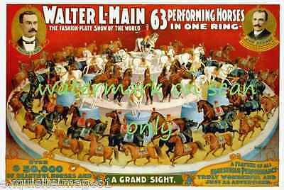 1899 Walter L.Main Circus Poster~63 Performing Horses in One Ring~NEW Note Cards
