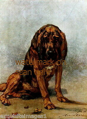 1914 Maud Earl~Sitting Bloodhound Puppy Dog Dogs~ NEW Large Note Cards
