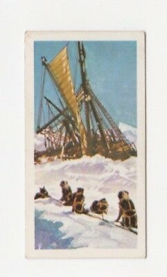 Antarctic Explorer Card - Brooke Bond Ernest Shackleton