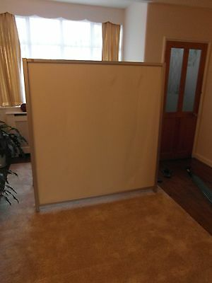 Projector Screen 5ft+5ft